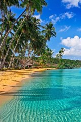 Top Most Tranquil Tropical Resorts For Your Dream Vacation04