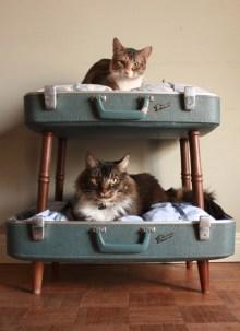 Diy Pet Bed Ideas01