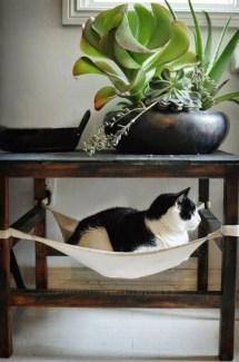 Diy Pet Bed Ideas12