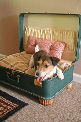 Diy Pet Bed Ideas25