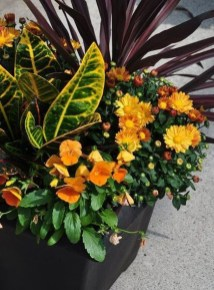 Helpful Tips For Autumn Update Of Your Garden32