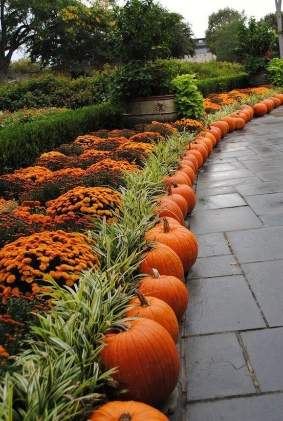 Helpful Tips For Autumn Update Of Your Garden39
