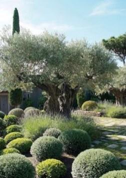 Ideas For Your Garden From The Mediterranean Landscape Design06