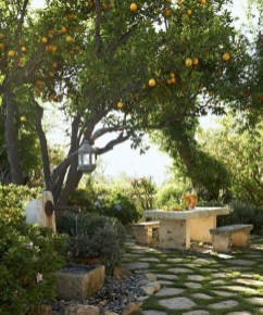 Ideas For Your Garden From The Mediterranean Landscape Design38