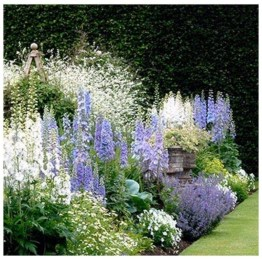 Beautiful Simple Front Yard Landscaping Design Ideas24
