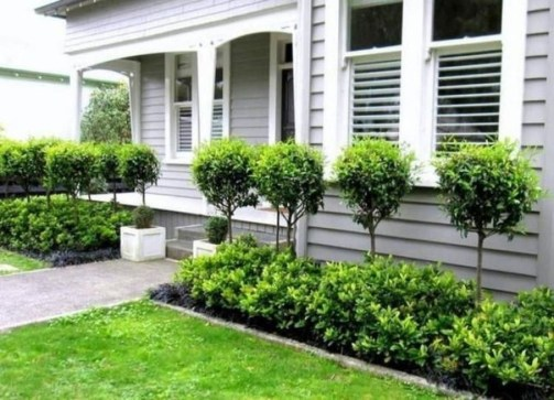 Beautiful Simple Front Yard Landscaping Design Ideas30