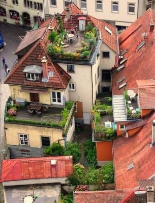Most Popular And Beautiful Rooftop Garden08