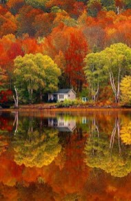 Soothing Autumn Landscape Ideas For This Season21