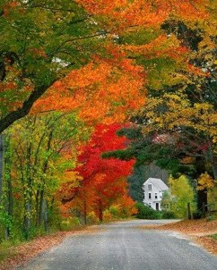 Soothing Autumn Landscape Ideas For This Season33
