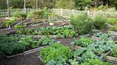 Lovely Backyard Garden Design Ideas03