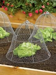 Lovely Backyard Garden Design Ideas04