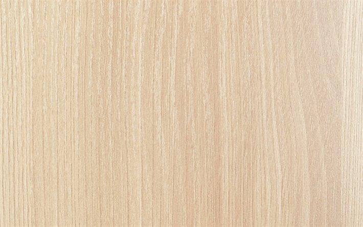 eucalyptus de texture en bois clair