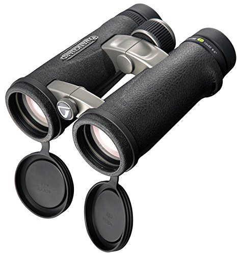 the Vanguard Endeavor ED 8x42 Binoculars Review