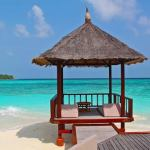 Metaphor Script Relaxation Island