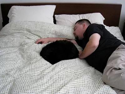 Sleep Training Hypnosis