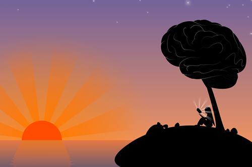 brain habits