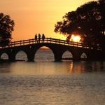 Healing Metaphor Bridge to Freedom