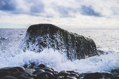 constant rock