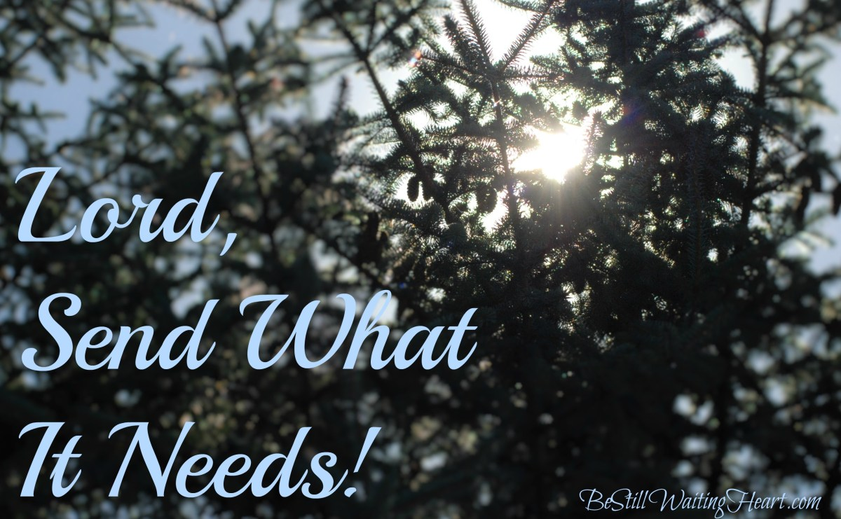 Lord, Send What It Needs!