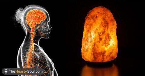 This is what happens to your lungs, brain and mood when you