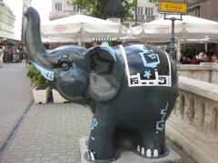 Elefants 6
