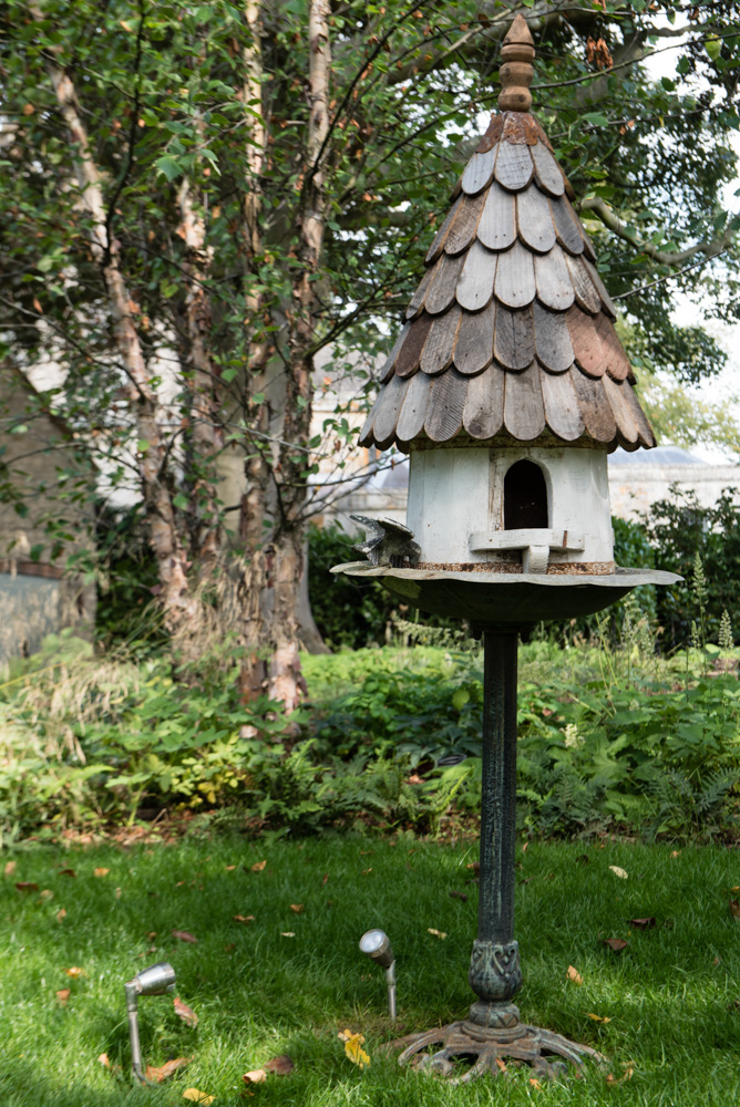 Bird house in the woodland menagerie