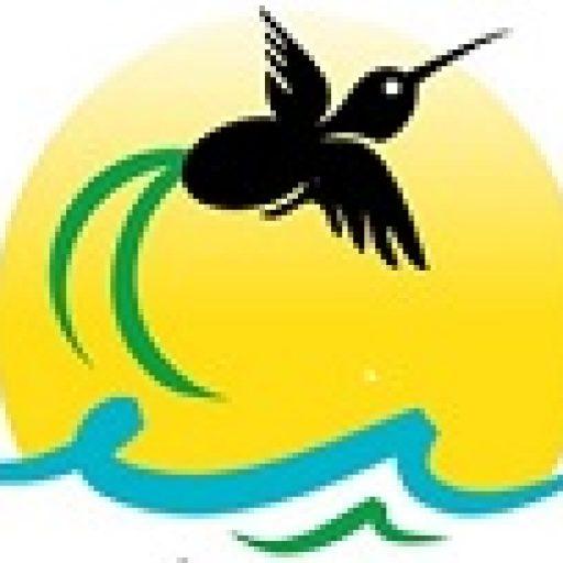 cropped-best-JAMAICA-TOURS-2.jpg