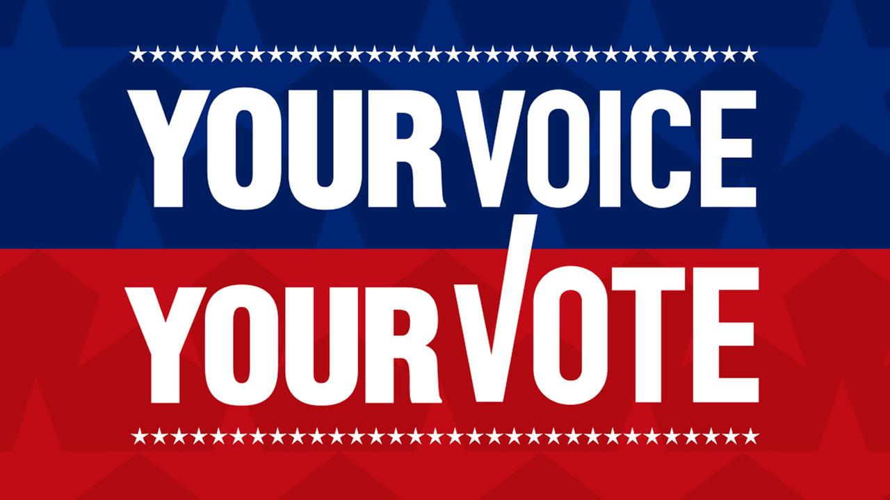 YOU VOICE YOUR VOTE