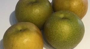 Nashi Japanese Pear