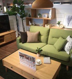 Nitori, Tokyo Furniture and Home Accessories