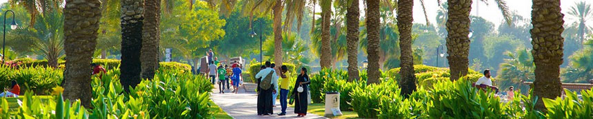 Locksmith in Safa Dubai