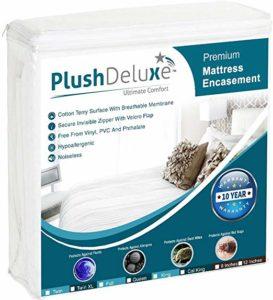 PlushDeluxe Premium Mattress Encasement