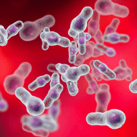 Read more about the article Little known Ways To Rid Yourself Of clostridium Difficile Infection