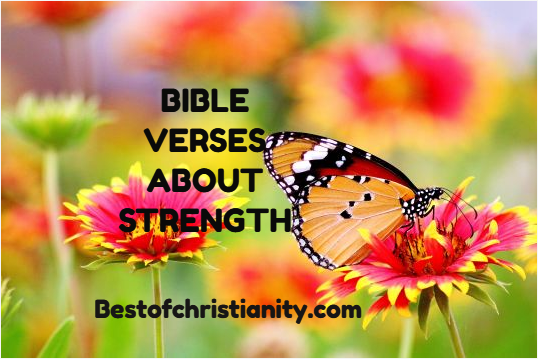 BEST OF CHRISTIANITY | Bestofchristianity com is a website