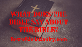 What Does The Bible Say About The Bible