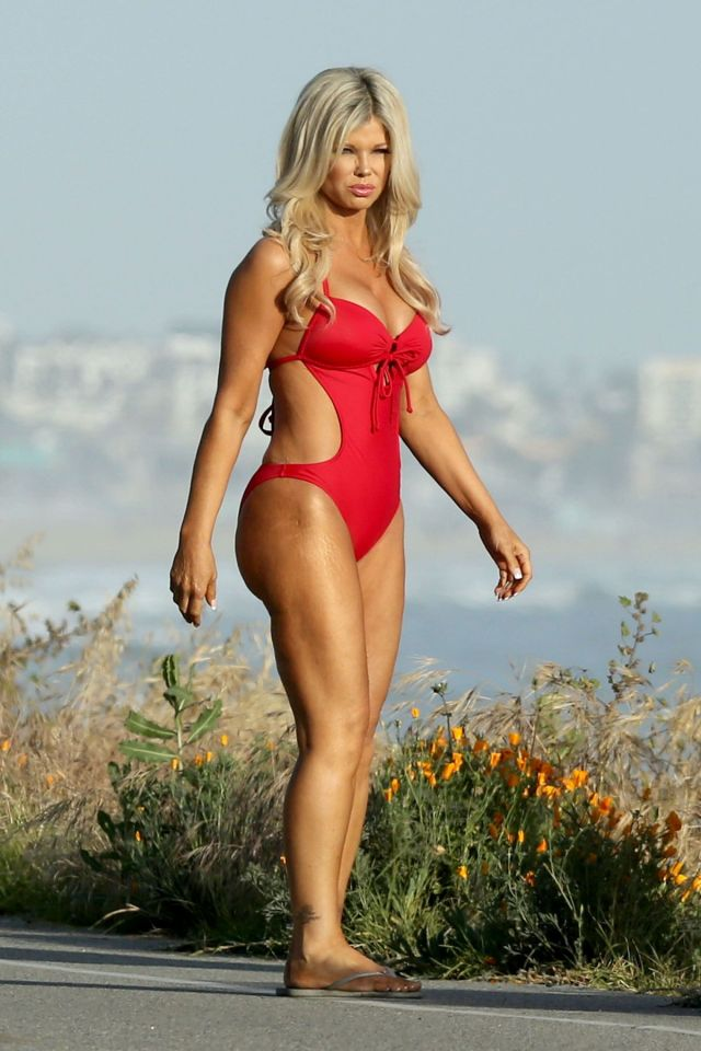 Donna D'Errico Baywatch Sexy Picture