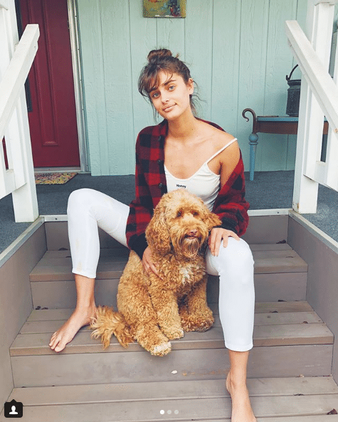 taylor hill dog lover