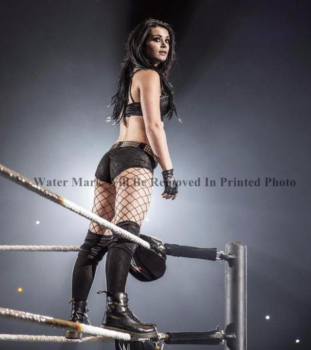 paige hot booty