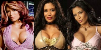 49 Hot Pictures Of Melina Perez The WWE Diva Will Drive You Insane For Her