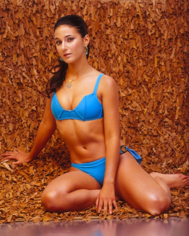 Emmanuelle Chriqui blue bikini hot