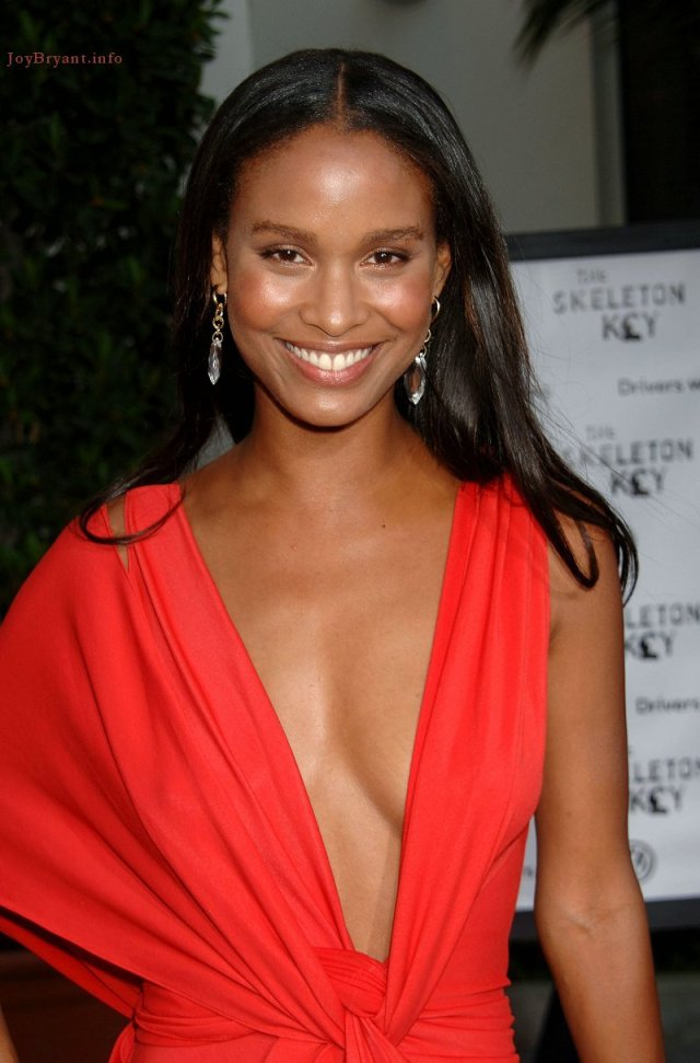 Joy Bryant Smile