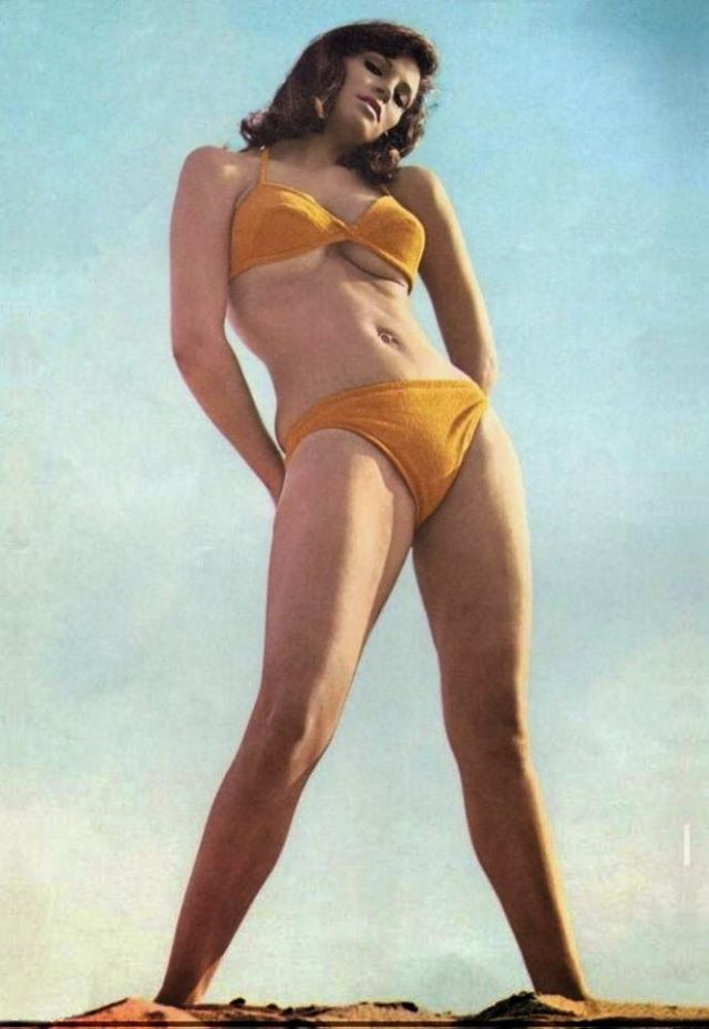 Raquel Welch hot and sexy photo