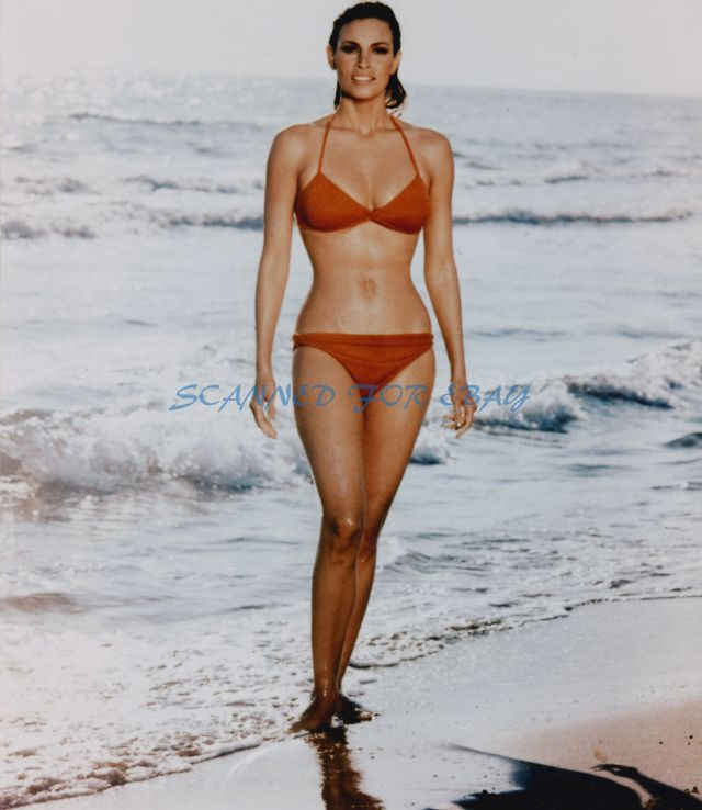 Raquel Welch too sexy pic