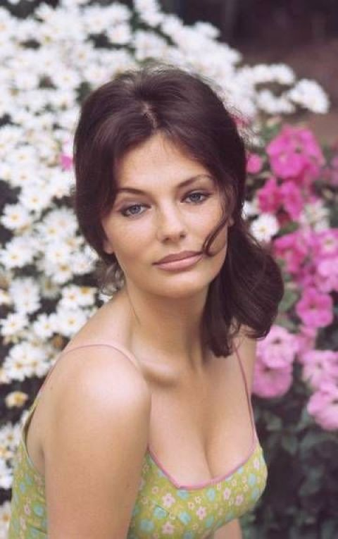 jacqueline-bisset cleavages sexy pics
