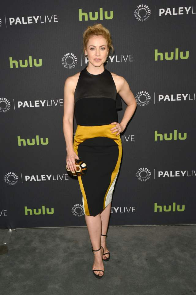 Amanda Schull hot dress pic