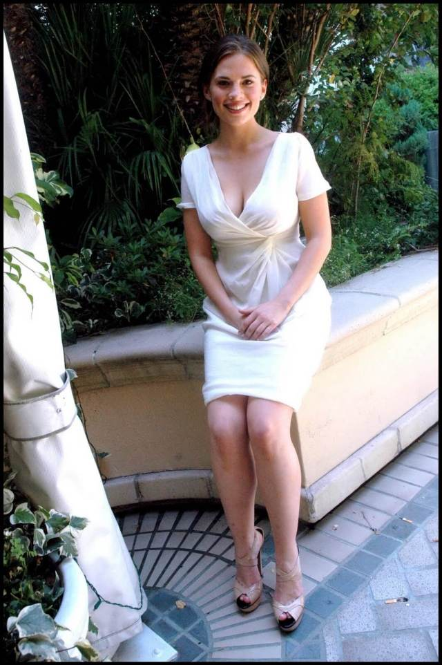 Hayley Atwell sexy busty pciture