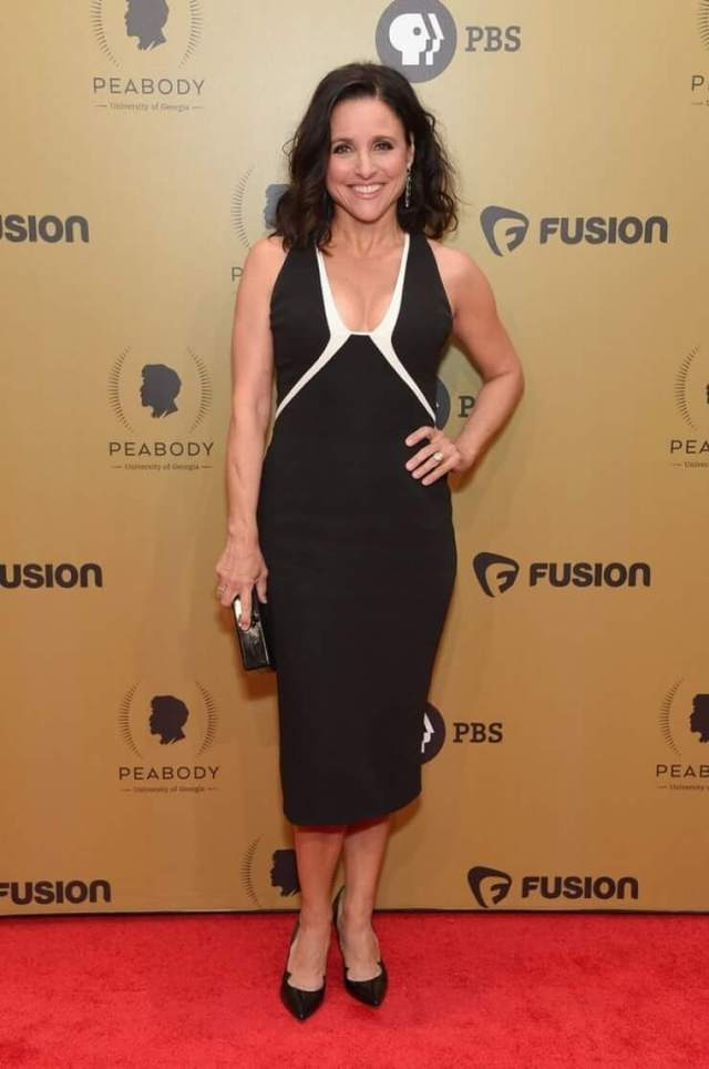 Julia Louis-Dreyfus awesome picture