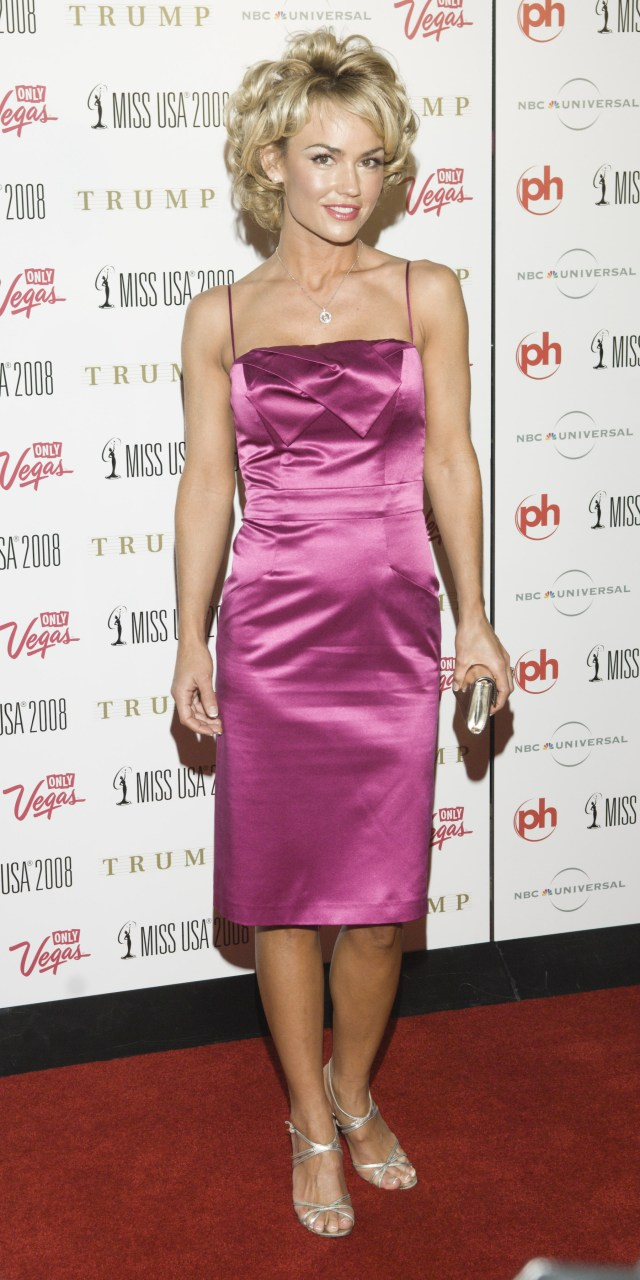 Kelly Carlson Hot Dress