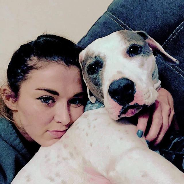 tegan nox dog lover