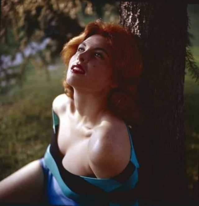Tina Louise sexy pictures (2)